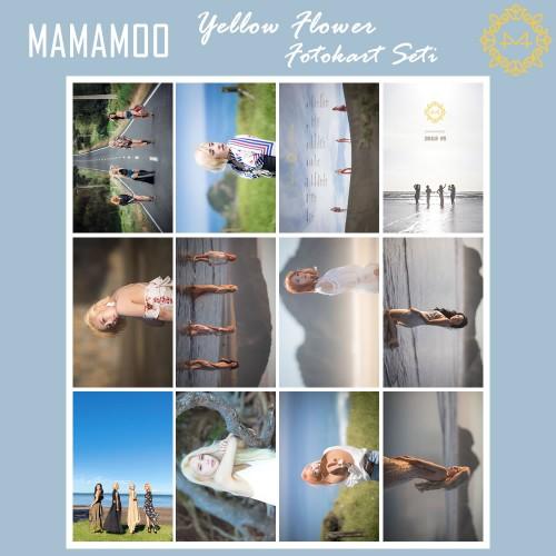 MAMAMOO Yellow Flower Fotokart Seti